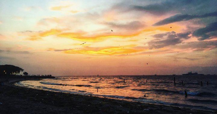 Kochi-is-not-a-city,-it-is-a-rhythm-feeling-2018-blog-4